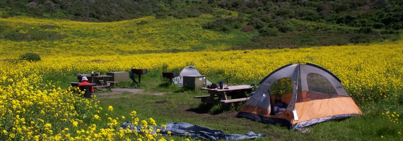 The only camping within Point Reyes is backcountry tent camping.