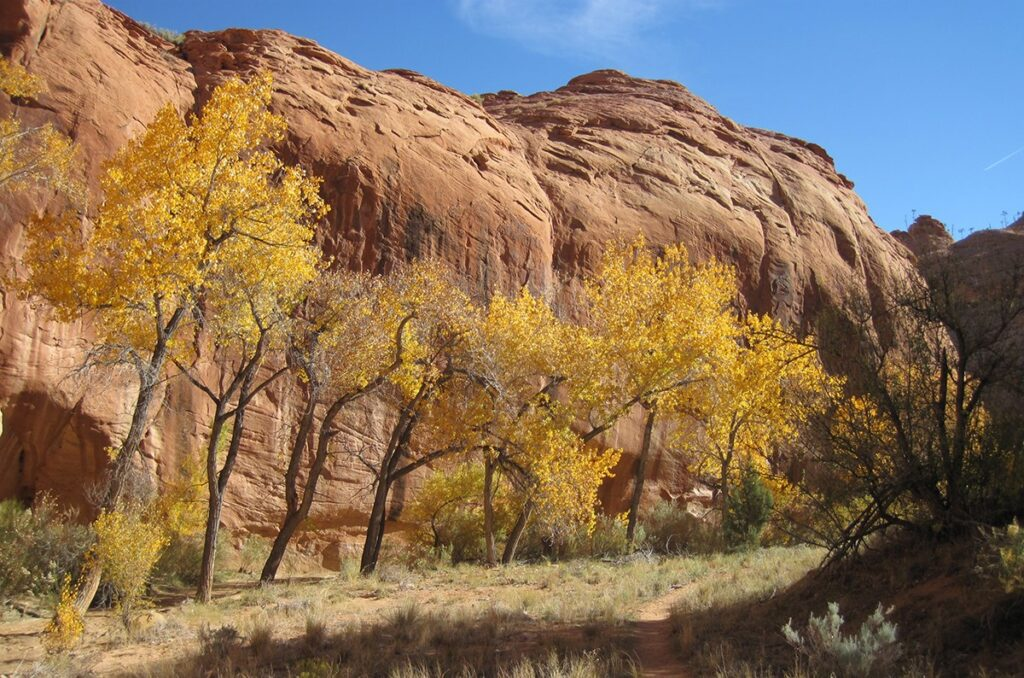 Grand Staircase-Escalante National Monument is one of the most incredible places to visit in Southern Utah.