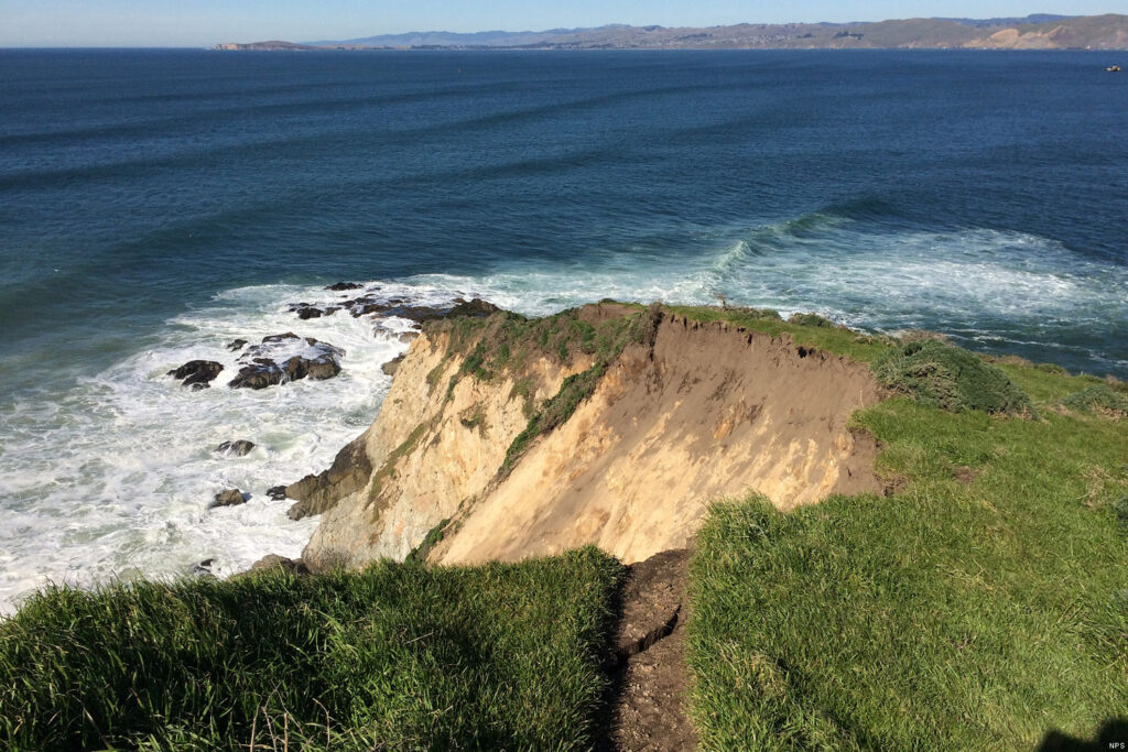 Tomales Point is the most popular moderate hike within the park.