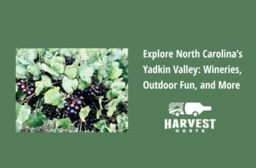 Explore North Carolina's Yadkin Valley: Wineries, Outdoor Fun, and More