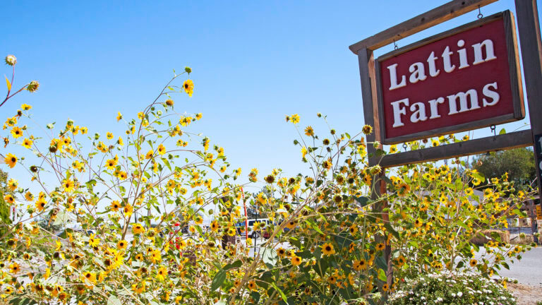 Lattin Farms is one of our awesome Harvest Hosts locations in Northern Nevada.