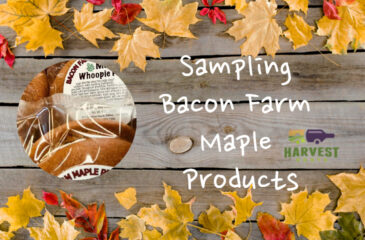 Sampling Bacon Farm Maple Products