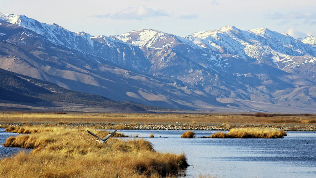 Northern Nevada is a spectacularly beautiful place.