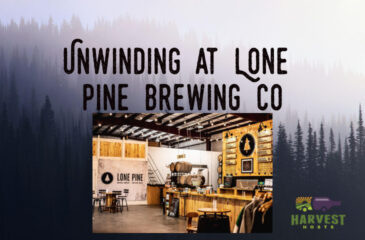 Unwinding at Lone Pine Brewing Co