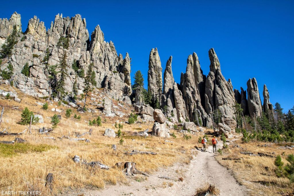 Custer State Park is an incredible stopping point on any Black Hills road trip.