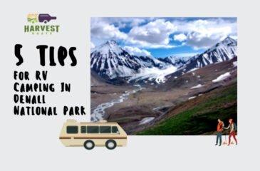 5 Tips For RV Camping In Denali National Park