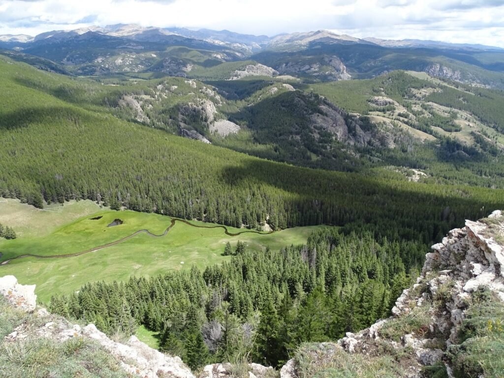 Bighorn National Forest is an incredible place in Northern Wyoming.
