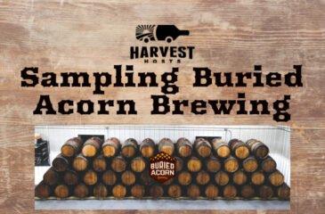 Sampling Buried Acorn Brewing